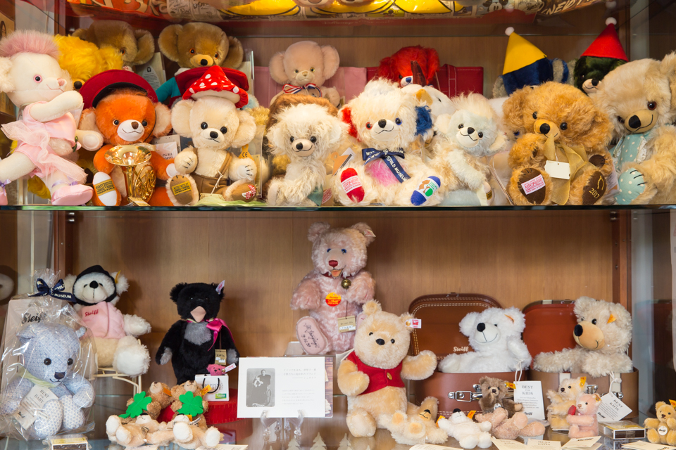 TEDDY BEAR SHOW CASE